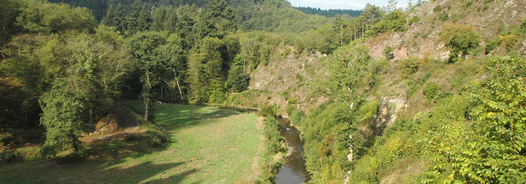 Elzbach-DSC_4952