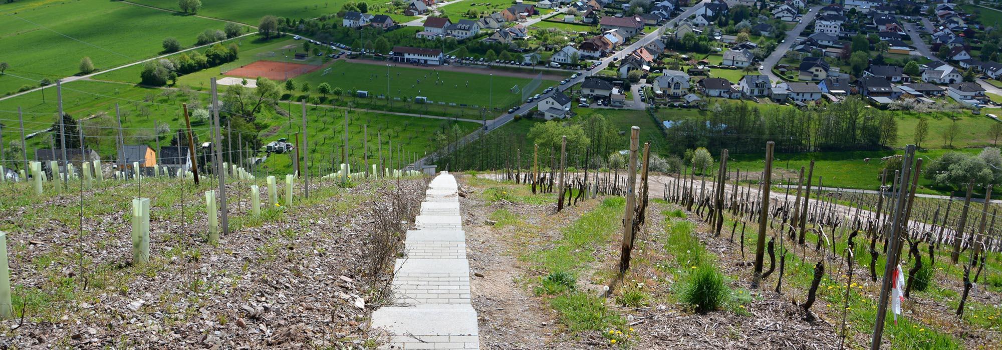 DSC_0269Ayl-Treppe