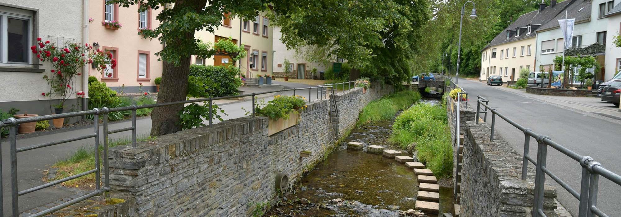 Burgen-Veldenz-ARN_4155