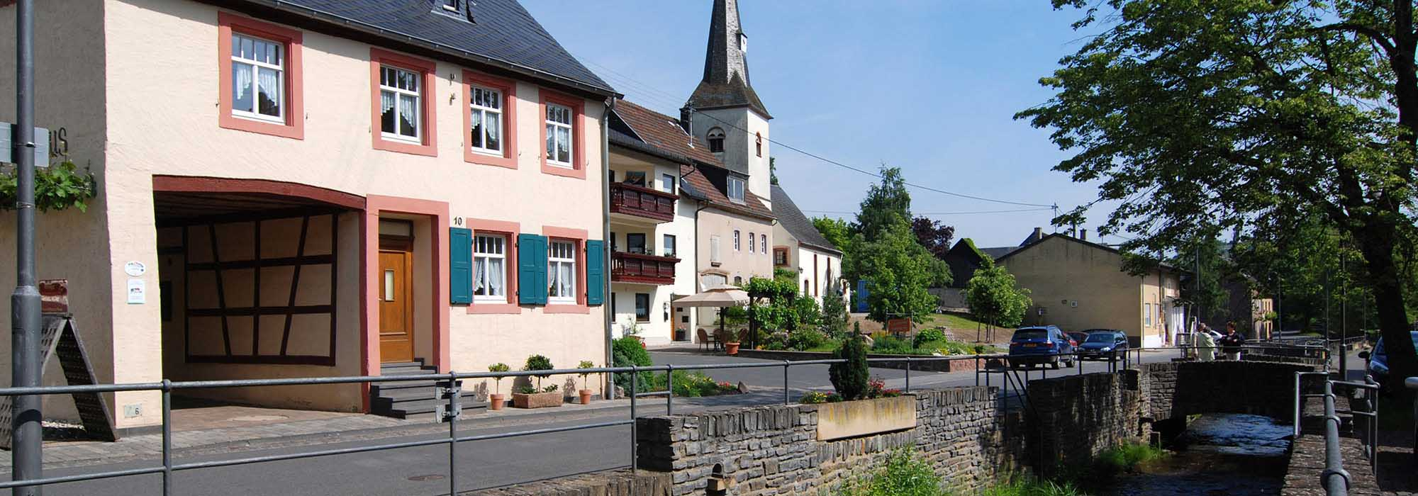 Burgen-Veldenz2-a