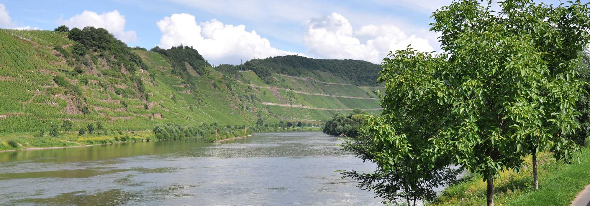 Mosel-DSC_0415