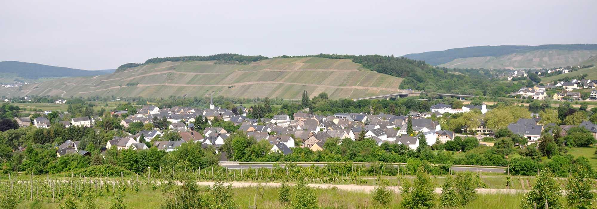 DSC_2311Muelheim