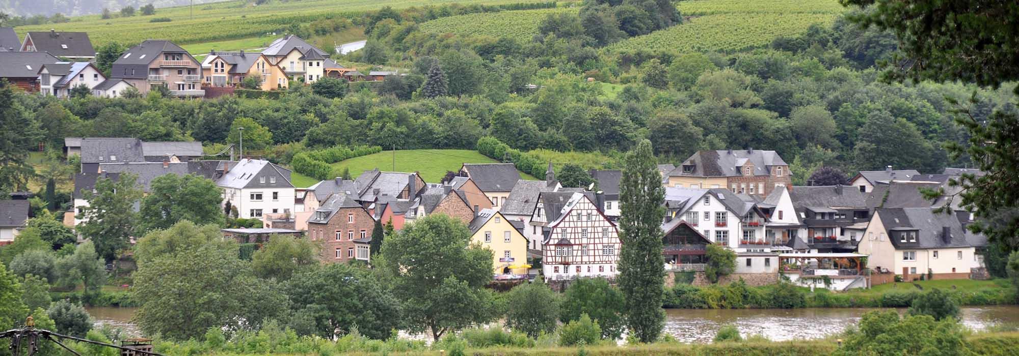 DSC_0822Senheim