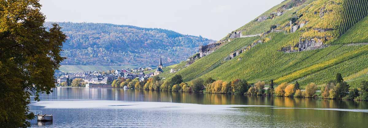 Zeltingen-Rachtig-Dorf+Bewohner-1412