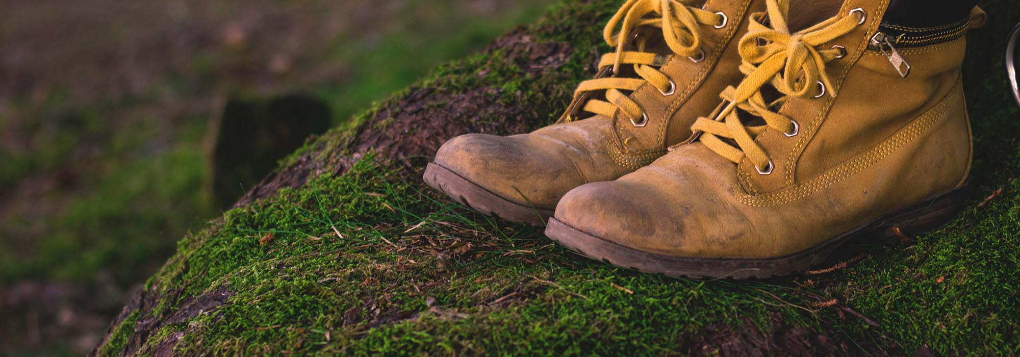 shoes-1638873