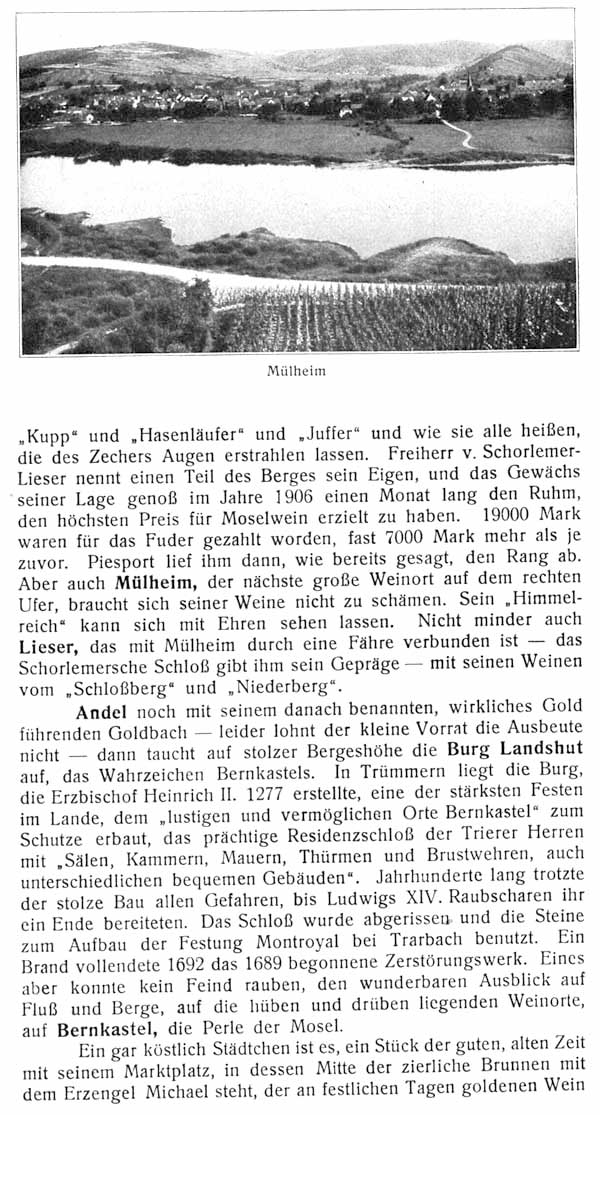 Moseltalbahn18